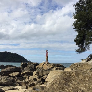 Wilson's Abel Tasman