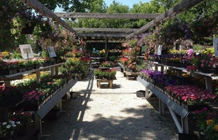 The Growing Place Garden Center