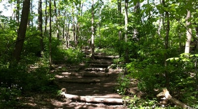 Photo of Trail Bird Hills Park at Newport Rd, Ann Arbor, MI 48103, United States