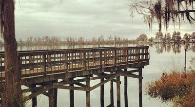 Photo of Park Palatkalaha Park at 12th St, Clermont, FL 34711, United States