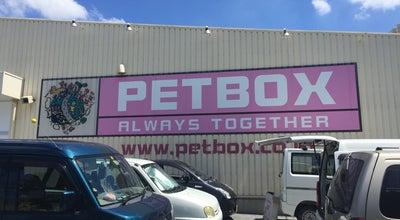Photo of Pet Store ペットボックス北谷店 at 美浜2-2-5, 中頭郡北谷町, Japan