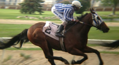 Photo of Racetrack The Horses at Northlands Park at 7410 Borden Park Rd, Edmonton, AB T5B 4W9, Canada