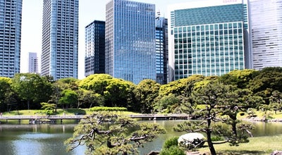 Photo of Botanical Garden Hama Rikyu Gardens at 浜離宮庭園1‐1, Chuo 104-0046, Japan