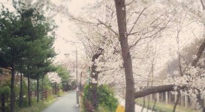Photo of Trail 허밍웨이 (Humming Way) at 서초구 신반포로 45, 서울특별시 137-811, South Korea