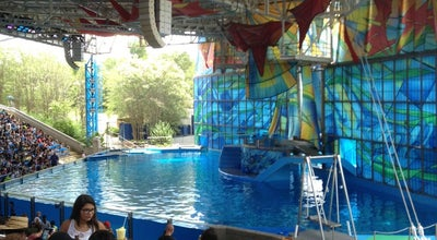Photo of Theme Park Beluga Stadium at 10500 Sea World Dr, San Antonio, TX 78251, United States
