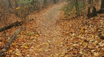 Photo of Park Alapocas Woods Park (Hiking Area) at Alapocas Dr, Wilmington, DE 19803, United States