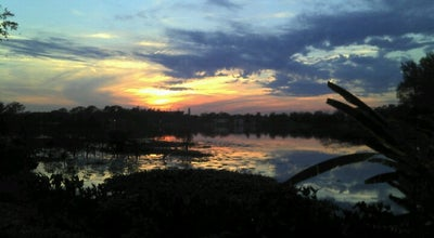 Photo of Lake LSU Lakes at Baton Rouge, LA 70808, United States