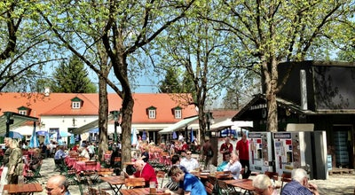 Photo of Beer Garden Königlicher Hirschgarten at Hirschgarten 1, München 80639, Germany