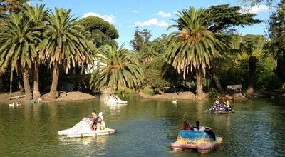 Photo of Lake Lago del Parque Rodo at Dr. Antonio María Rodriguez, Montevideo 11200, Uruguay