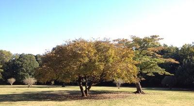 Photo of Park 東高根森林公園 at 宮前区神木本町2-10-1, 川崎市 216-0031, Japan