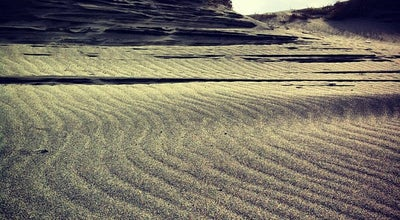 Photo of Beach 中田島砂丘 (Nakatajima Sand Dune) at 南区中田島町, 浜松市 430-0845, Japan