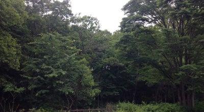 Photo of Park 黒川清流公園 at 東豊田3-16-1, 日野市, Japan