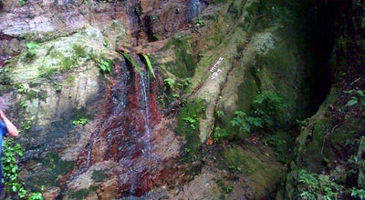 Photo of Trail Parque El Avila - Quebrada Mariperez at Venezuela
