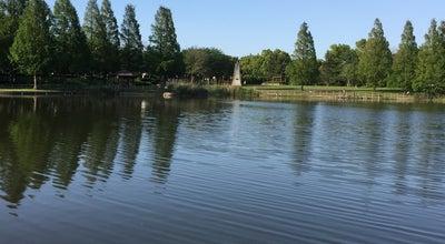 Photo of Park 松伏総合公園 at ゆめみ野4-1, 北葛飾郡松伏町, Japan