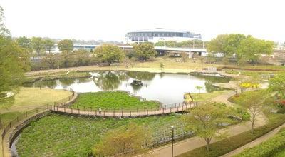 Photo of Lake さちの池 at 大手町3-14-1, 前橋市 371-0026, Japan