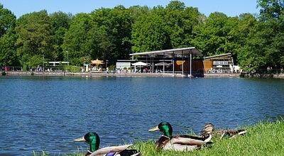 Photo of Lake Pelzmühlenteich at Pelzmühlenstraße, Chemnitz 09117, Germany