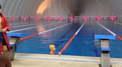 Photo of Pool Fikret Unlu Olimpik Yuzme Havuzu at Kemal Kaynas Caddesi, Karaman 70100, Turkey