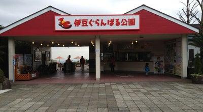 Photo of Theme Park 伊豆ぐらんぱる公園 at 富戸1090, 伊東市 413-0232, Japan