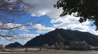 Photo of Park 長良川公園 at 長良福光字田ヶ脇前, 岐阜市, Japan