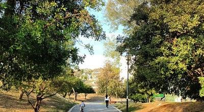 Photo of Park Parque Rufino Tamayo at Av. Eugenio Garza Lagüera (antes Fundadores), San Pedro Garza García, Mexico