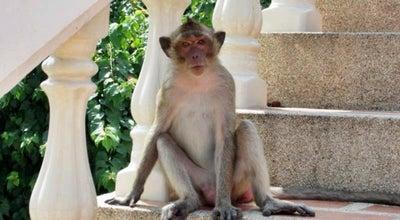 Photo of Temple วัดเขาตะเกียบ(หัวหิน) at Thailand