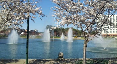 Photo of Lake Fountains at City Center, Newport News, VA 23606, United States