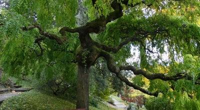Photo of Botanical Garden Jardin Botanique Lausanne at Avenue De Cour 14bis, Lausanne 1007, Switzerland