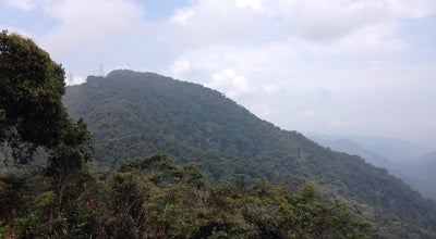 Photo of Trail Puncak Gunung Jasar at Malaysia