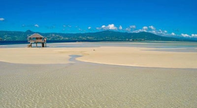 Photo of Beach Manjuyod White Sandbar at Philippines