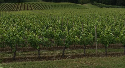 Photo of Winery Cristom Vineyards at 6905 Spring Valley Rd Nw, Salem, OR 97304, United States