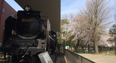 Photo of Historic Site D51 125号機 at 薬円台4-25-19, 船橋市, Japan