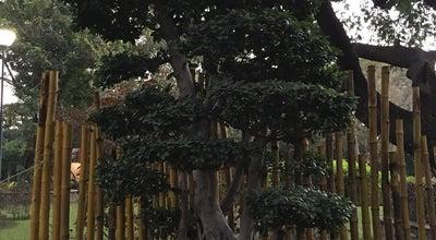 Photo of Park Semmozhi Poongaa at Cathedral Road, Chennai, India
