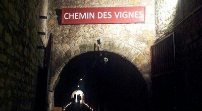 Photo of Wine Shop Chemin des Vignes at 113 Bis Avenue De Verdun 92130, France