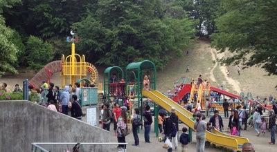 Photo of Playground こどもの国 遊具広場 at 青葉区奈良町700, Yokohama 227-0036, Japan
