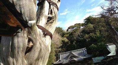 Photo of Shrine 白濱神社 (伊古奈比咩命神社) at 白浜2740, 下田市, Japan