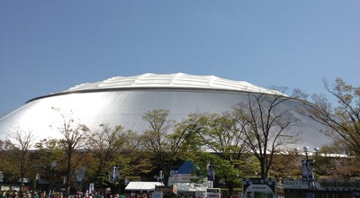 Photo of Baseball Stadium 西武プリンスドーム (Seibu Prince Dome) at 上山口2135, 所沢市 359-1196, Japan
