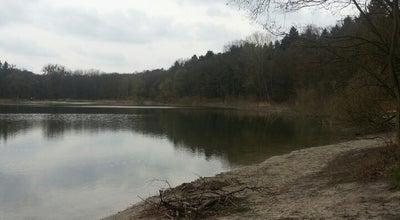 Photo of Lake Goplana at Poland