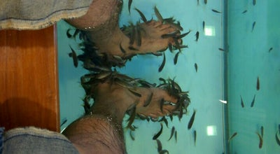 Photo of Spa Fish Spa at India