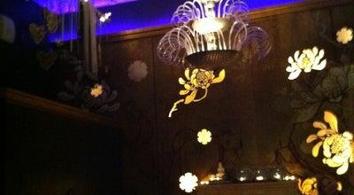 Photo of Cafe Dolceamaro Caffé & Bar at Friedrichsplatz 13, Mannheim 68165, Germany