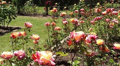 Photo of Garden Rose Garden at Golden Gate Park, San Francisco, CA 94118, United States