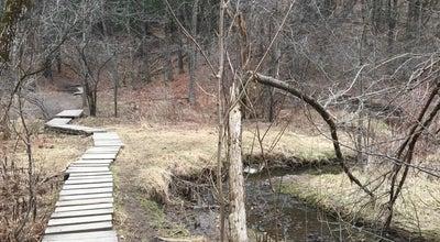 Photo of Trail Centennial Woods at 14 Centennial Ct, Burlington, VT 05401, United States