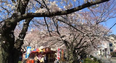 Photo of Park 春日 桜道緑道 at 博多区春町/西春町, 福岡市 812-0000, Japan