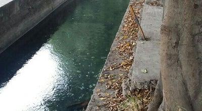 Photo of Pool El canal at Cuernavaca, Mexico
