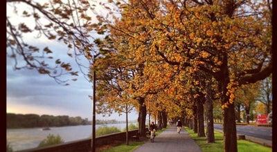 Photo of Other Great Outdoors Rheinpromenade Düsseldorf at Rotterdamerstraße, Düsseldorf, Germany