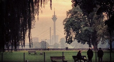 Photo of Park Rheinpark at Theodor-heuss-brücke, Düsseldorf 40474, Germany