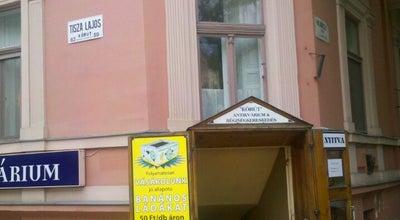 Photo of Bookstore Körút antikvárium at Szeged 6720, Hungary