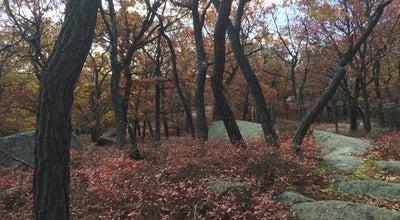 Photo of Trail Appalachian Trail (Bear Mtn) at NY, United States