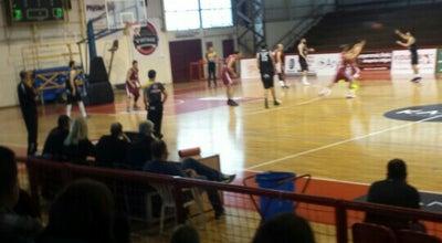 Photo of Basketball Court ΕΑΚ ΛΑΡΙΣΑΣ at Στάδιο Αλκαζάρ, Λάρισα, Greece