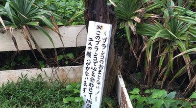 Photo of Beach イキヅービーチ at 平良前里976, Miyakojima 906-0422, Japan