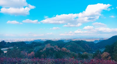 Photo of Golf Course 関西空港ゴルフ倶楽部 at 若樫町882-5, 和泉市 594-1143, Japan